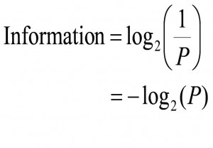 Information Equation